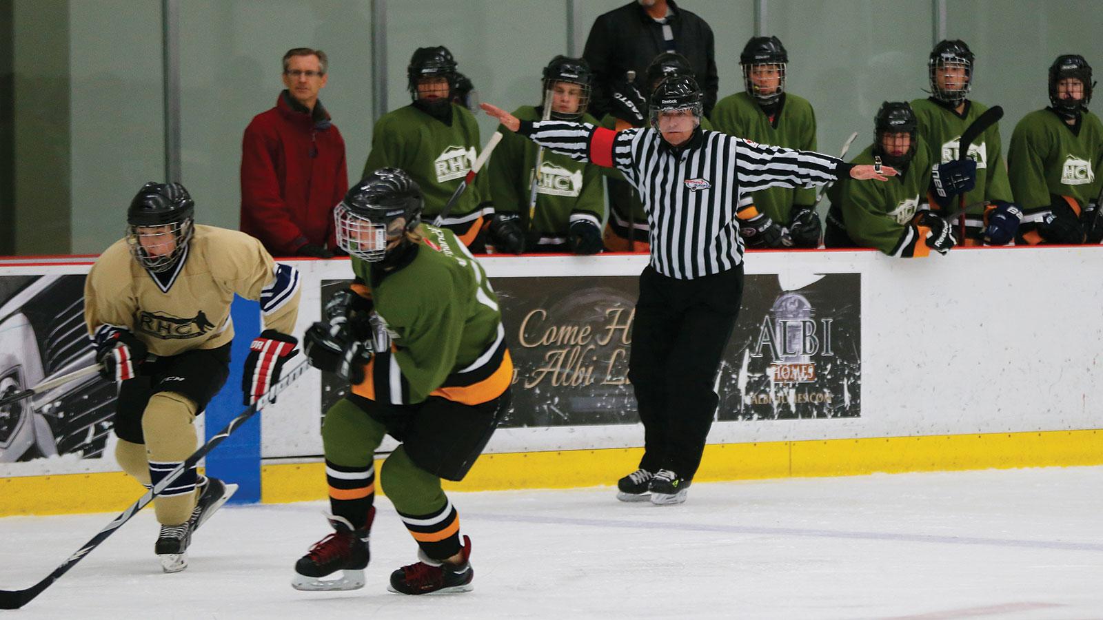 The new minor hockey fights